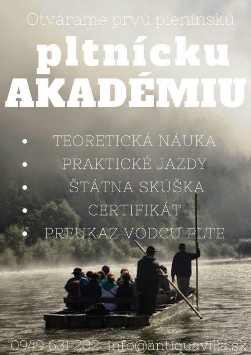 Pltnicka akademia